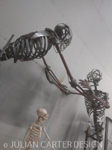 Julian Carter Design. The completed skeletons in the studio.